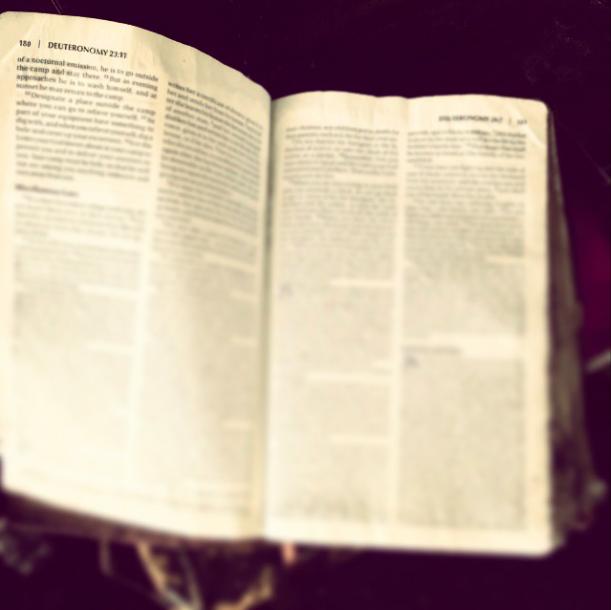 Cuổn Kinh Thánh của Hillary Scott sau vụ hoả hoạn