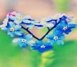 blue-flower-heart-love-facebook-timeline-cover1366x76866250