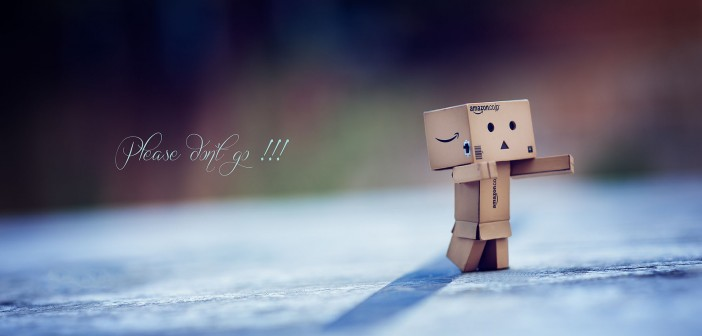 danbo-says-please-don-t-go