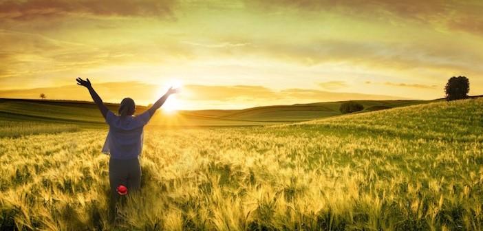 woman-in-wheatfield-sunrise1