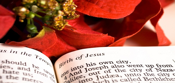 bible-and-poinsettia