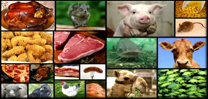 Unclean-animals