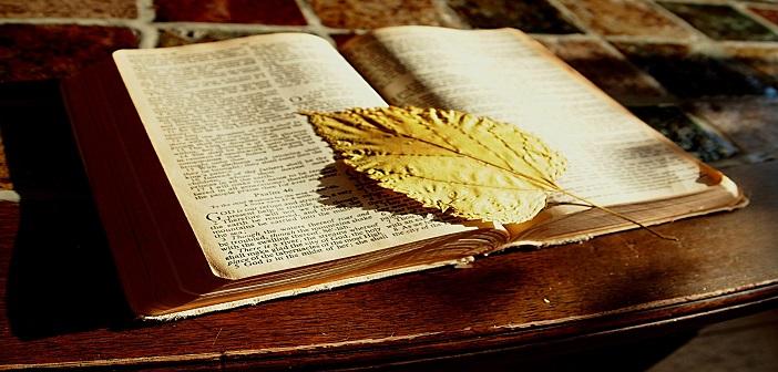 bible-1166260_1920